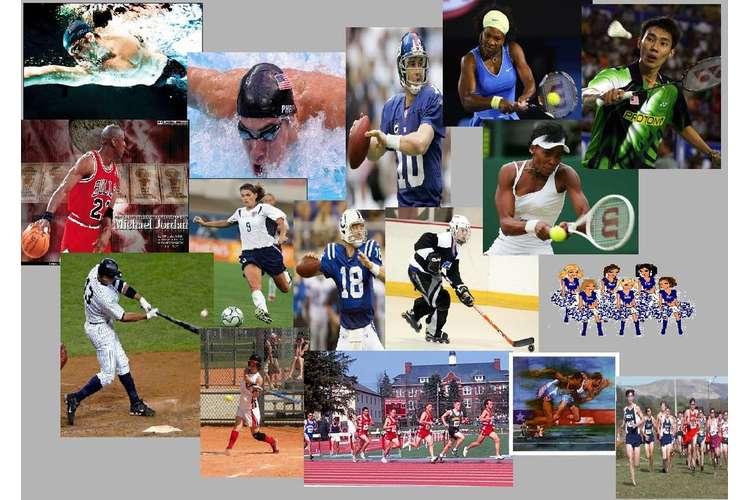 Most Popular Sports Teams
